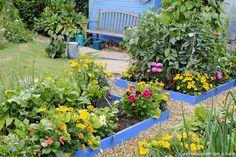 bordure jardin bois peint bleu