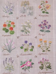 Embroidery patterns  botanical  herb embroidery  japanese