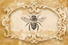 Bountiful Heirlooms: Bees, Butterflies, and Dragonflies: Free Journal Printables Éphémères Vintage, Vintage Ephemera, Vintage Labels, Kit Design, Paper Art, Paper Crafts, Bee Crafts, Bee Art, Bee Theme