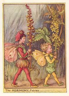 FLOWER FAIRIES: AGRIMONY FAIRY. Cicely Barker print. c1948