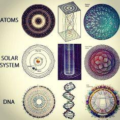 Leonardo da Vinci's Principles for the Development of a Complete Mind:1) Study the science of art.2) Study the art of science. 3)…