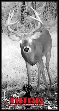 Northeast Kansas DeerHuntingBigBucks.com