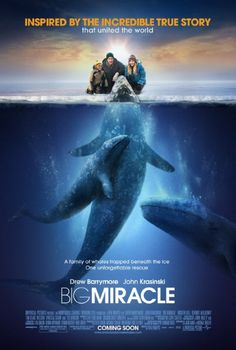 Big Miracle: surprisingly, it works very well B+