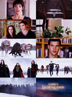 Breaking Dawn part 2 Twilight Scenes, Twilight Saga Series, Twilight Book, Twilight Breaking Dawn, Twilight Cast, Breaking Dawn Part 2, Great Love Stories, Love Story, Best Vampire Movies