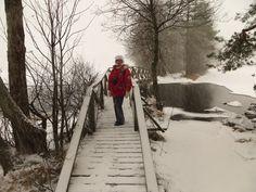 Kyynäränharju Juova 23.1. 2015  #liesjärvi #kansallispuisto #nationalpark #korteniemi #erärenki #retket