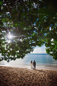 憧れのリゾートウェディング♡ビーチで撮る素敵なウェディングフォトにきゅんにて紹介している画像