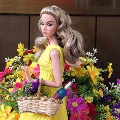 Poppy goes picnic