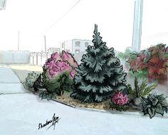 Kim Shadow Landscape Design, Plants, Flora, Plant, Landscape Designs, Planting