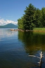 This time of year brings me back to summers spent at our cottage at Lake Memphremagog In the Eastern Townships of Quebec; of outings in the canoe...
