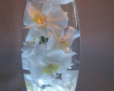 White orchids in water, all in a 12 inch vase which sits on a lighted base perfect for wedding reception centepieces and home decor