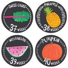 Growing Garden Belly Monthly Stickers