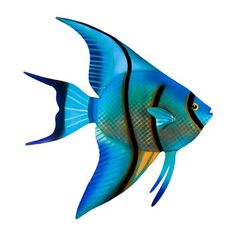 Angelfish face right - salt water fish tank Metal Wall Sculpture, Metal Wall Art, Bass Fishing Pictures, Fishing Videos, Salt Water Fish, Fish Drawings, Fly Fishing, Fishing Reels, Fishing Boots