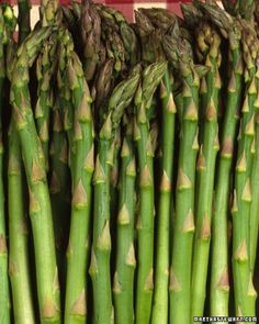 Asparagus growing guide, they take forever!! At least I plan to be in my rental a few years.