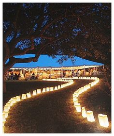 Candlelit path to the reception. I will most def be doing this if I have an outside wedding. With mason jars Outdoor Wedding Reception, Outside Wedding, Wedding Ceremony, Our Wedding, Dream Wedding, Reception Ideas, Wedding Ideas, Outdoor Evening Weddings, Reception Entrance