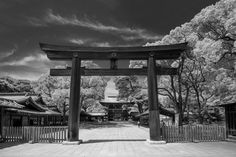 Meiji Jingu Pinterest users can get 20% off the ebook with this code: PINT20