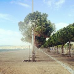 The new seafront parks. You can walk all the way to the city center with this setting to your right. (Walking Thessaloniki - Route 17, Depot)