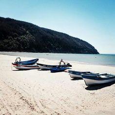 Playas del sur de Chile Chile, Sun Lounger, Boat, Country, Outdoor Decor, South Beach, Beaches, Countries, Santiago