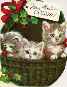 Cousin Christmas card basket of kittens
