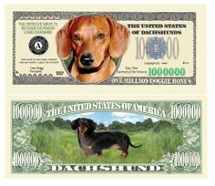 SET OF 5 BILLS-DACHSHUND MILLION DOLLAR BILL by Novelties Wholesale. $3.99. This Special Edition Collectible Dollar Bill CERTIFICATE SERVES TO RECOGNIZE DACHSHUND LOVERS EVERYWHERE!! The PERFECT gift for Dachshund owners!