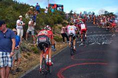 Vuelta a España 2014 - Stage 14: Santander - La Camperona. Valle de Sábero 200.8km - Bart De Clercq (Lotto-Belisol) struggles to hold on as the breakaway hits the steep slopes