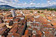 | ♕ |  Red roofs - Lucca, Tuscany  | by © Christophe Faugere