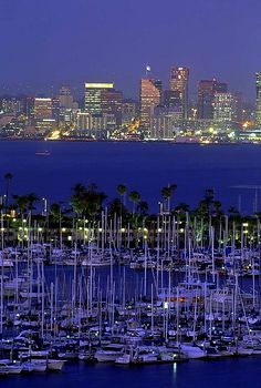 Shelter Island yacht harbor with skyline of San Diego, California
