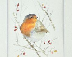 Robin watercolor painting