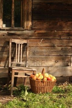 basket of apples and old chair