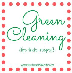 Blissful and Domestic- Thrifty Living and Big Smiles: Green Cleaning