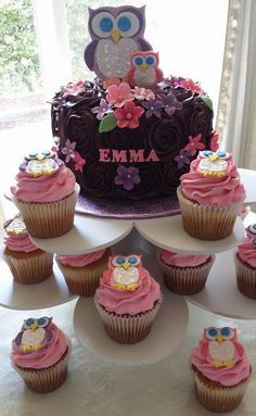 Fondant owl theme cake. Cupcakes with fondant toppers