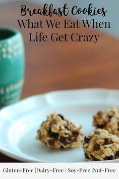 Crazy easy breakfast cookies that taste so yummy! #glutenfree #nutfree #dairyfree #soyfree #cornfree   Real Foodie Family