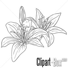 CLIPART FLOWERS SKETCH STYLE