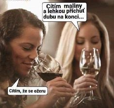 Two types of wine drinkers. Crazy Funny Pictures, Funny Photos, Funny Texts, Funny Jokes, Wine Meme, Daily Funny, E Cards, Wine Drinks, Wine Cellar