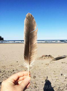 alisaburke: 5 creative ways to use a feather