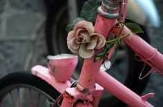 I need to find a flower for my lovely bike♥