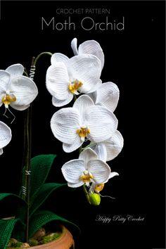 Ravelry: Crochet Orchid, Moth (Phal) flower pattern by Happy Patty Crochet