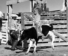 Hal Earnhardt riding a calf as a young cowboy. Cowboy Lifestyle Network's Official Professional Rodeo Cowboys Association (PRCA) Celebrity of the Month is a Pro Rodeo champion team roper, Hal Earnhardt.