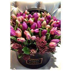 Maison Des Fleurs Like and Repin. Noelito Flow instagram http://www.instagram.com/noelitoflow