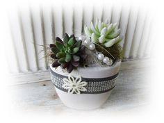 **Wir bieten Ihnen eine tolle Wohndeko zum Kauf an.**  _- Dekoriert ist es in einem Keramik Übertopf mit künstlichen Sukkulenten, Perlen, Sisal, Draht, Glitzerband, Schleifenband, Filzblüte,...