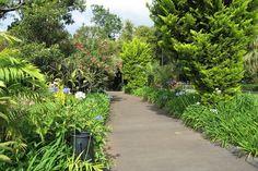Pestana Village Garden Resort Madeira - Mieke Löbker - Picasa Webalbums