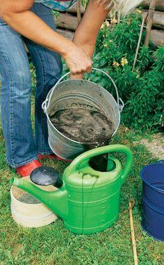 Kompostwasser ist einhervorragender Flüssigdünger