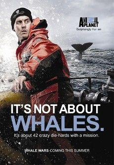 Whale Wars whale war, sea shepherd, tvs, homes, tv shows, people, whales