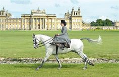 Side saddle at Blenheim Palace