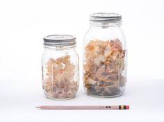 Sharpener Jar  e il temperamatite diventa un soprammobile misura-creatività