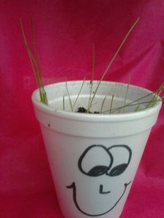 take your foam cup home, put a face on the front, sprinkle some potting soil in, and a few grass seeds Foam Cups, Grass Seed, Potting Soil, Play To Learn, Reuse, Macaroni, Activities For Kids, Planter Pots, Seeds