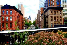 20 Free Things To Do In New York City // Highline park above meat packing district