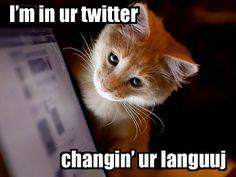 Twitter Haz a LolCats Language Setting
