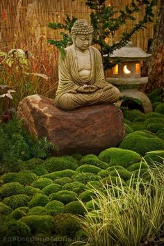 Easy DIY Zen Garden Design Ideas - - Easy DIY Zen Garden Design Ideas - - - How to make a hanging succulent ball - Lowe's by phoebe Buddha Garden Fountain LED Water Feature Self Contained Ornament NEW by Serenity 5017730353073 Feng Shui Garden Design, Zen Garden Design, Zen Design, Small Japanese Garden, Japanese Garden Design, Asian Landscape, Landscape Design, Amazing Gardens, Beautiful Gardens