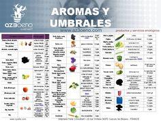 Los defectos del vino - Aromas y umbrales