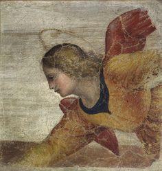 Bernardino Luini, Angelo, 1520-1521, Affresco Staccato Trasportato su Tela, Pinacoteca di Brera